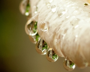 drops-of-water-2
